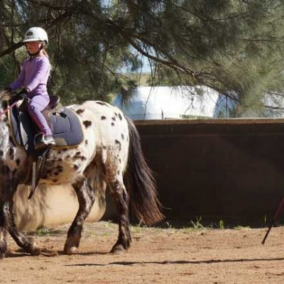 Western Plains Riding Centre
